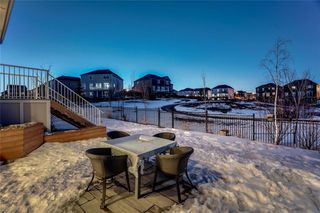 Photo 44: 283 Stonemere Green: Chestermere Detached for sale : MLS®# C4233917