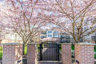 Photo 20: 406 5430 201 Street in Langley: Langley City Condo for sale : MLS®# R2356025