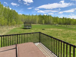 Photo 23: 31 1319 TWP RD 510: Rural Parkland County House for sale : MLS®# E4151734