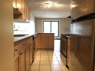 Photo 13: 202 10917 109 Street in Edmonton: Zone 08 Condo for sale : MLS®# E4156517