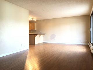 Photo 6: 202 10917 109 Street in Edmonton: Zone 08 Condo for sale : MLS®# E4156517