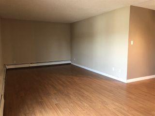 Photo 5: 202 10917 109 Street in Edmonton: Zone 08 Condo for sale : MLS®# E4156517