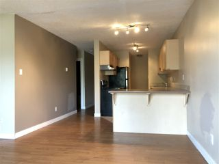 Photo 4: 202 10917 109 Street in Edmonton: Zone 08 Condo for sale : MLS®# E4156517