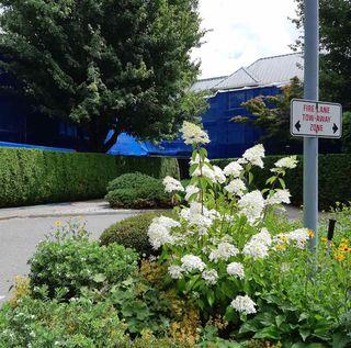 "Photo 23: 305 2700 MCCALLUM Road in Abbotsford: Central Abbotsford Condo for sale in ""The SEASONS"" : MLS®# R2479464"