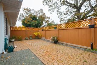 Photo 22: 66 4125 Interurban Rd in : SW Northridge Row/Townhouse for sale (Saanich West)  : MLS®# 859360