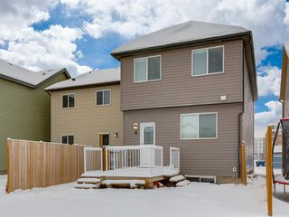Photo 38: 107 Skyview Point Crescent NE in Calgary: Skyview Ranch Detached for sale : MLS®# A1048632