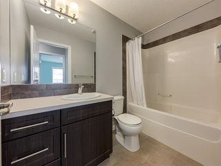 Photo 34: 107 Skyview Point Crescent NE in Calgary: Skyview Ranch Detached for sale : MLS®# A1048632