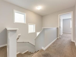 Photo 23: 107 Skyview Point Crescent NE in Calgary: Skyview Ranch Detached for sale : MLS®# A1048632
