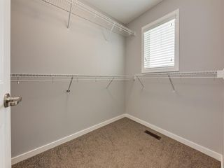 Photo 28: 107 Skyview Point Crescent NE in Calgary: Skyview Ranch Detached for sale : MLS®# A1048632