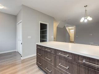 Photo 15: 107 Skyview Point Crescent NE in Calgary: Skyview Ranch Detached for sale : MLS®# A1048632
