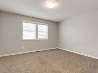 Photo 25: 107 Skyview Point Crescent NE in Calgary: Skyview Ranch Detached for sale : MLS®# A1048632