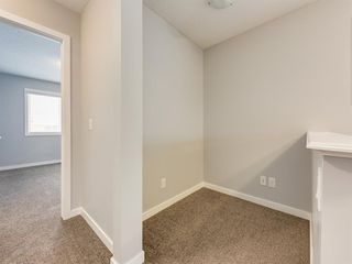 Photo 24: 107 Skyview Point Crescent NE in Calgary: Skyview Ranch Detached for sale : MLS®# A1048632