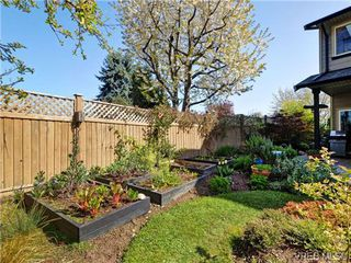 Photo 19: 2520 Cedar Hill Rd in VICTORIA: Vi Oaklands Half Duplex for sale (Victoria)  : MLS®# 697951