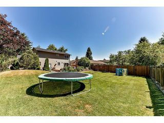 Photo 19: 15484 MADRONA Drive in Surrey: King George Corridor House for sale (South Surrey White Rock)  : MLS®# F1443553