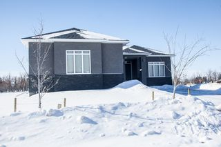 Photo 43: 336 Drury Avenue in Winnipeg: West Kildonan / Garden City Residential for sale (North West Winnipeg)  : MLS®# 1604304
