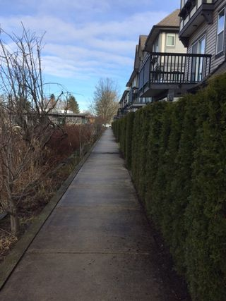 """Photo 20: 31 9566 TOMICKI Avenue in Richmond: West Cambie Townhouse for sale in """"WISHING TREE"""" : MLS®# R2140405"""