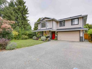 Photo 1: 20341 WALNUT Crescent in Maple Ridge: Southwest Maple Ridge House for sale : MLS®# R2199123