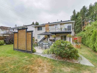 Photo 20: 20341 WALNUT Crescent in Maple Ridge: Southwest Maple Ridge House for sale : MLS®# R2199123