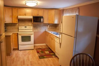 Photo 15: 11480 CREEKSIDE STREET in Maple Ridge: Cottonwood MR House for sale : MLS®# R2204552