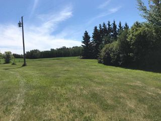 Photo 4: 50447 Range Road 234: Rural Leduc County House for sale : MLS®# E4117562