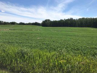 Photo 5: 50447 Range Road 234: Rural Leduc County House for sale : MLS®# E4117562