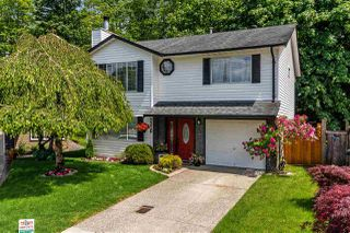 "Photo 1: 9220 214 Street in Langley: Walnut Grove House for sale in ""Walnut Grove"" : MLS®# R2303292"