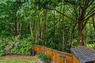 "Photo 18: 9220 214 Street in Langley: Walnut Grove House for sale in ""Walnut Grove"" : MLS®# R2303292"