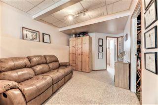 Photo 19: 15003 133 Street in Edmonton: Zone 27 House for sale : MLS®# E4157236