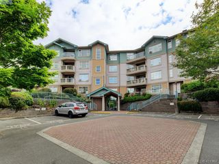 Photo 1: 203 799 Blackberry Rd in VICTORIA: SE High Quadra Condo Apartment for sale (Saanich East)  : MLS®# 816789