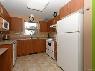 Photo 10: 203 799 Blackberry Rd in VICTORIA: SE High Quadra Condo Apartment for sale (Saanich East)  : MLS®# 816789