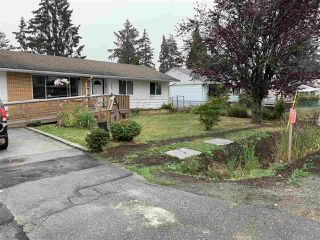 Photo 3: 19665 55A Avenue in Langley: Langley City House for sale : MLS®# R2499229