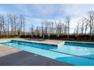 """Photo 16: 10 2332 RANGER Lane in Port Coquitlam: Riverwood Townhouse for sale in """"Fremont Blue"""" : MLS®# R2022229"""