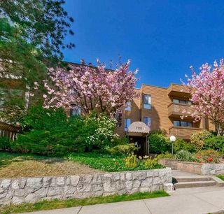 Photo 2: 206 7151 EDMONDS Street in Burnaby: Highgate Condo for sale (Burnaby South)  : MLS®# R2152254