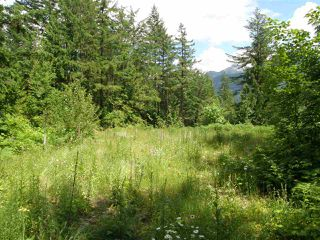 Photo 12: 23685 AMERICAN CREEK Road in Hope: Hope Center Land for sale : MLS®# R2176452