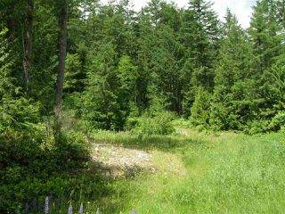 Photo 9: 23685 AMERICAN CREEK Road in Hope: Hope Center Land for sale : MLS®# R2176452