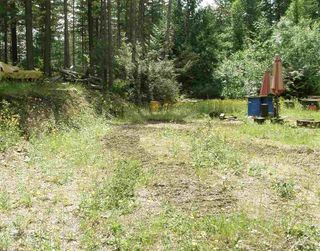 Photo 3: 23685 AMERICAN CREEK Road in Hope: Hope Center Land for sale : MLS®# R2176452
