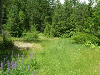 Photo 8: 23685 AMERICAN CREEK Road in Hope: Hope Center Land for sale : MLS®# R2176452