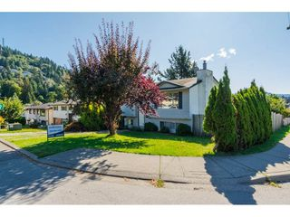 Photo 1: 34810 MCCABE Place in Abbotsford: Abbotsford East House for sale : MLS®# R2210615