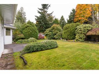 "Photo 2: 16267 11A Avenue in Surrey: King George Corridor House for sale in ""McNALLY CREEK"" (South Surrey White Rock)  : MLS®# R2217205"