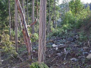 Photo 7: LOT 15 BONNINGTON DRIVE in NANOOSE BAY: PQ Fairwinds Land for sale (Parksville/Qualicum)  : MLS®# 776049