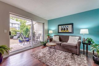"""Photo 16: 108 22611 116 Avenue in Maple Ridge: East Central Condo for sale in """"ROSEWOOD CT."""" : MLS®# R2310147"""