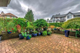 """Photo 17: 108 22611 116 Avenue in Maple Ridge: East Central Condo for sale in """"ROSEWOOD CT."""" : MLS®# R2310147"""