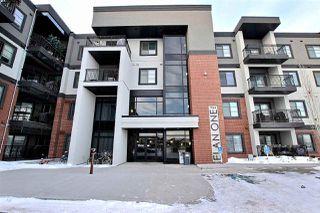 Main Photo: 206 1144 ADAMSON Drive in Edmonton: Zone 55 Condo for sale : MLS®# E4139907