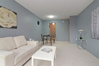 Photo 4: 167 200 WESTHILL Place in Port Moody: College Park PM Condo for sale : MLS®# R2346422