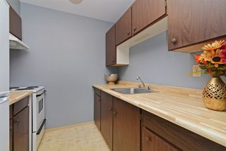 Photo 8: 167 200 WESTHILL Place in Port Moody: College Park PM Condo for sale : MLS®# R2346422