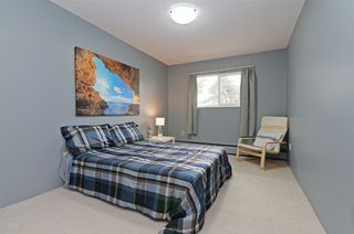 Photo 11: 167 200 WESTHILL Place in Port Moody: College Park PM Condo for sale : MLS®# R2346422