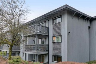 Photo 19: 167 200 WESTHILL Place in Port Moody: College Park PM Condo for sale : MLS®# R2346422