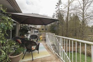 Photo 13: 24084 109 Avenue in Maple Ridge: Cottonwood MR Townhouse for sale : MLS®# R2357542