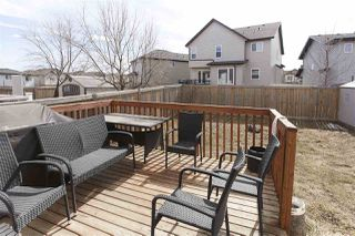 Photo 30: 22061 95B Avenue in Edmonton: Zone 58 House for sale : MLS®# E4153022