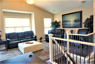 Photo 20: 4623 201 Street in Edmonton: Zone 58 House for sale : MLS®# E4154139